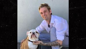 Aaron Carter Under Scrutiny for Allegedly Flipping Rescue Dog for Cash, He Denies